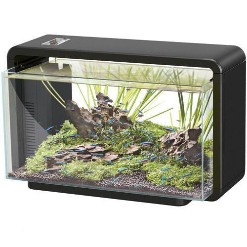 bol com   SuperFish Home   Aquarium   25 liter   Zwart   Dier
