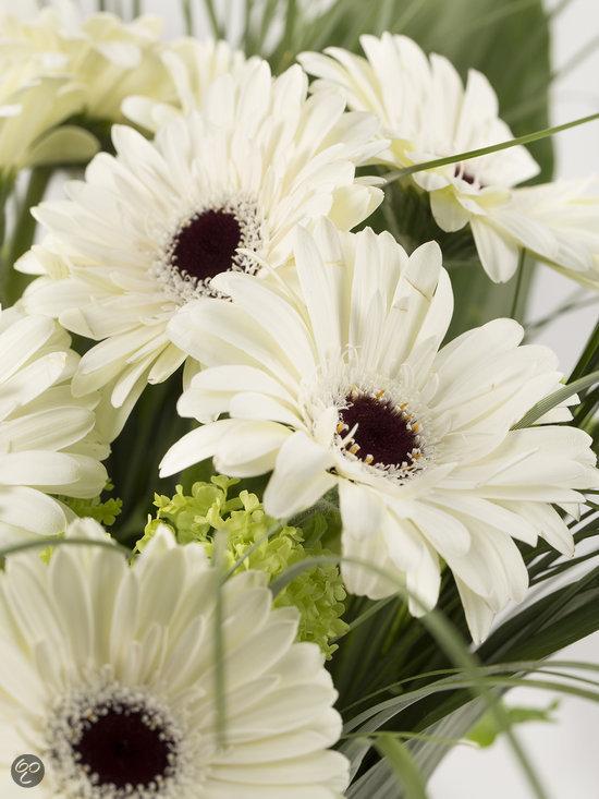 Boeket verse bloemen met witte gerbera 39 s tuin for Gerbera in de tuin