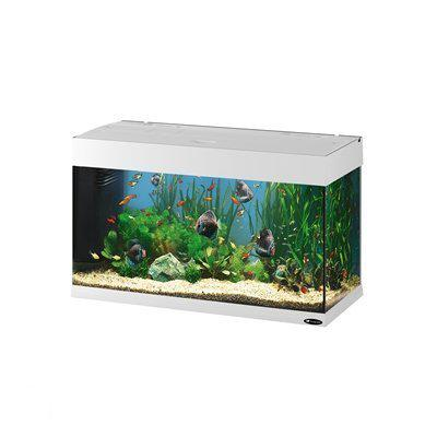 Ferplast dubai aquarium 80 liter wit for Aquarium 80 litres