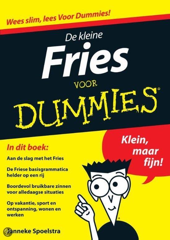 De kleine Fries voor Dummies