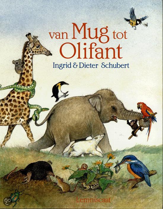 Van mug tot olifant
