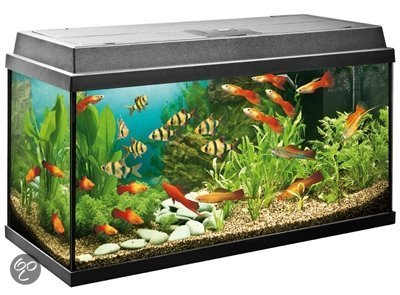 juwel rekord aquarium 110 liter zwart 80 x 35 x 45 cm. Black Bedroom Furniture Sets. Home Design Ideas