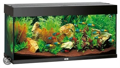 juwel rio aquarium 180 liter zwart. Black Bedroom Furniture Sets. Home Design Ideas