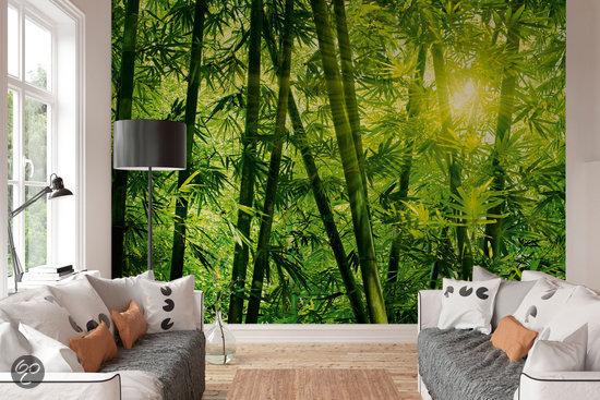 Bamboo forest 8 delig fotobehang 366 x 254 cm klussen - Behang in de badkamer ...
