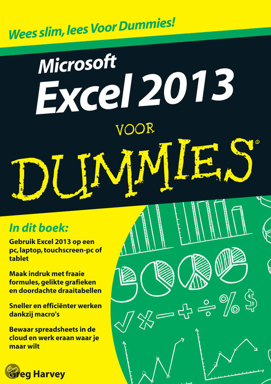 Microsoft Excel 2013 voor Dummies