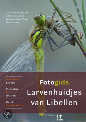 Fotogids larvenhuidjes van libellen