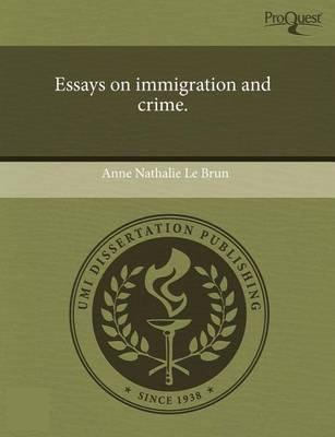 Persuasive Essay Examples About Immigration