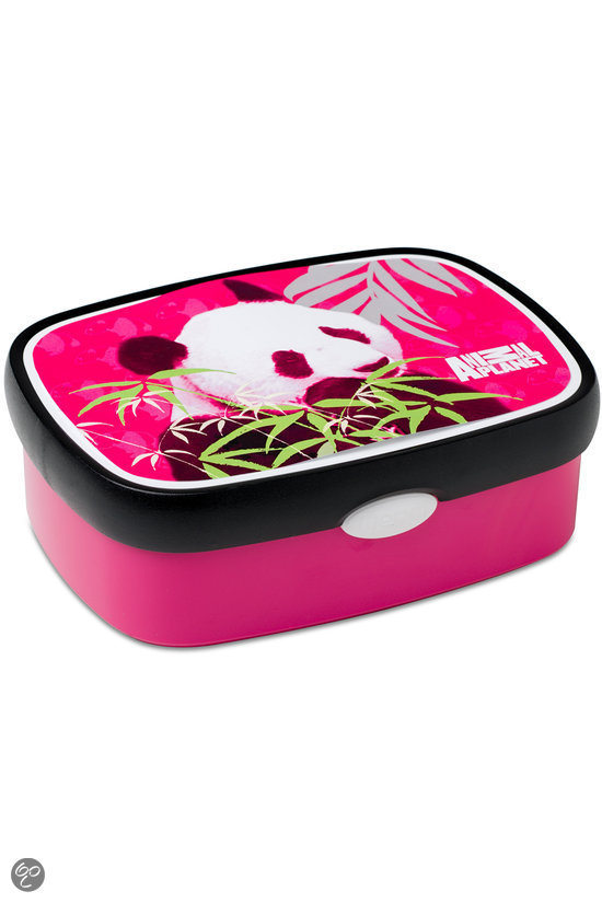 Panda Lunchbox