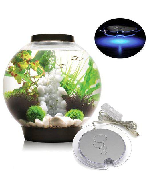 biorb intelligent led aquarium 60 liter zwart. Black Bedroom Furniture Sets. Home Design Ideas