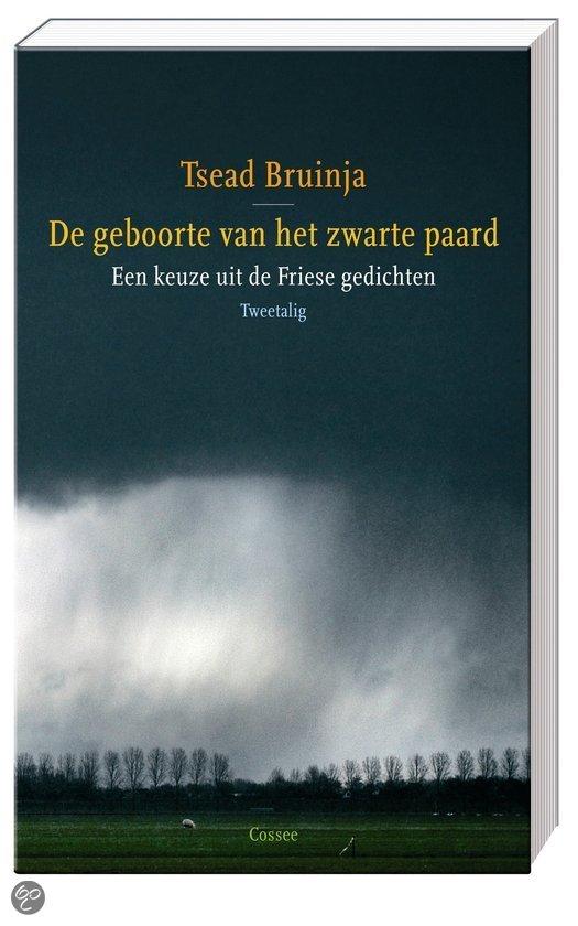 De Geboorte Van Het Zwarte Paard  ISBN:  9789059362048  –  Tjeerd Bruinja