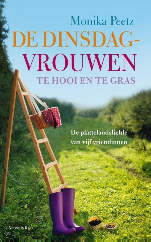 de dinsdagvrouwen te hooi en te gras ebook epub met digitaal watermerk. Black Bedroom Furniture Sets. Home Design Ideas