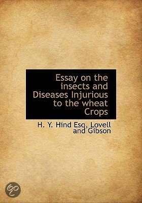essay on diseases By: kristy haugen the term heart disease is a very broad term problems can arise within the heart muscle, arteries supplying blood to the heart muscle, or.