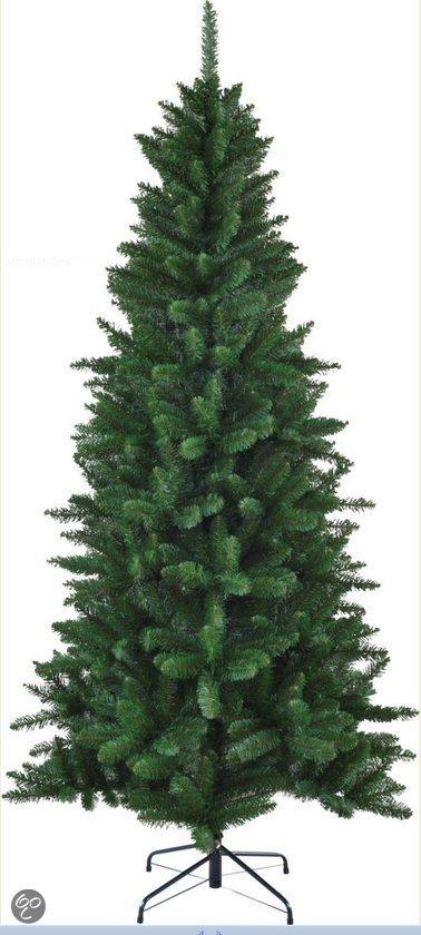 black box trees kerstboom danfield h215d107 groen tips 651. Black Bedroom Furniture Sets. Home Design Ideas