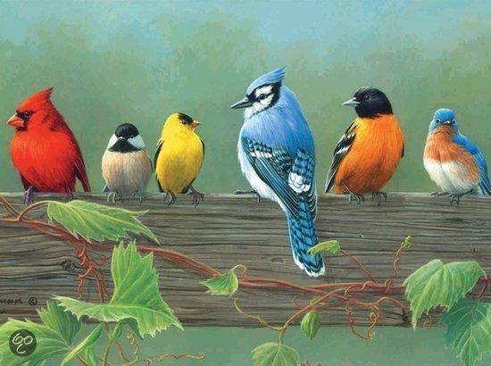 Reeves Schilderen op nummer Rail Birds in Lijnden