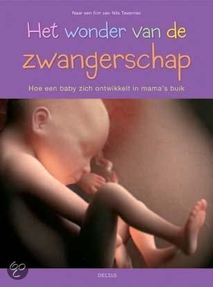 Het Wonder Van De Zwangerschap