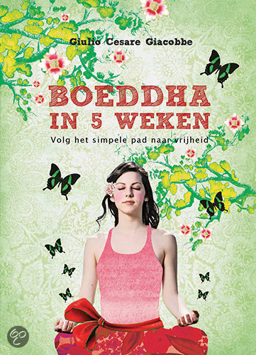 Boeddha in 5 weken