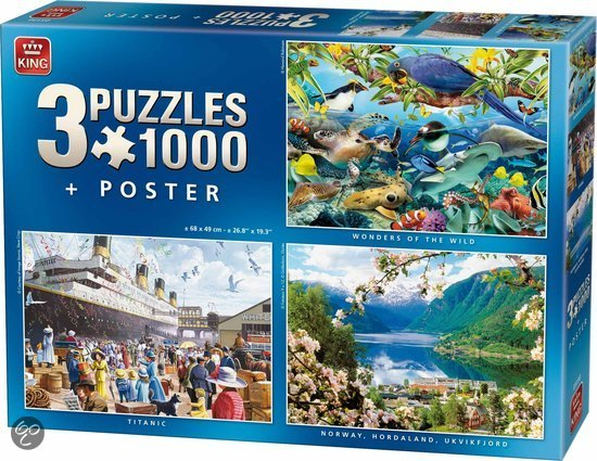 Puzzel 3 in 1 1000 stukjes