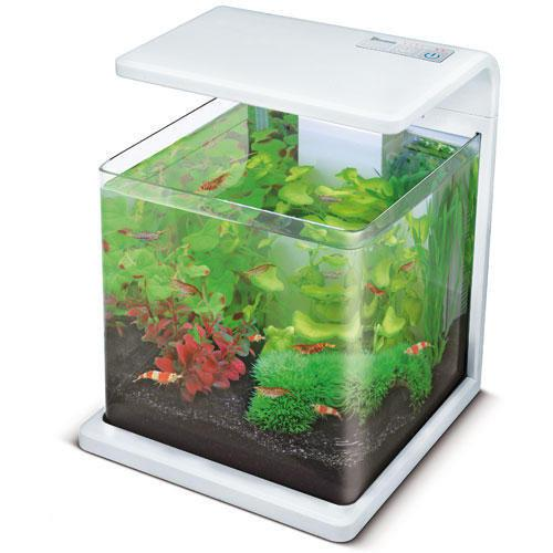 superfish wave aquarium 15 liter wit. Black Bedroom Furniture Sets. Home Design Ideas