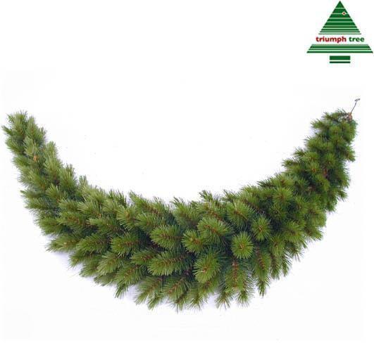 😉 Kerstboom nodig ?   VANDAAG speciale ... TRIUMPH TREE RICHMOND ...