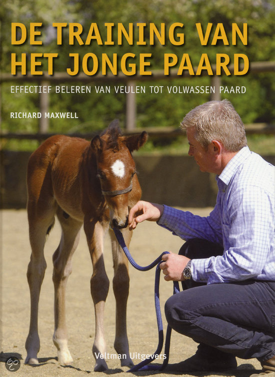 De Training Van Het Jonge Paard