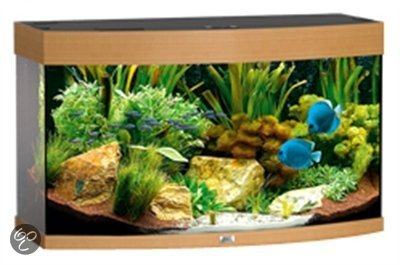 juwel vision aquarium 180 liter beuken. Black Bedroom Furniture Sets. Home Design Ideas