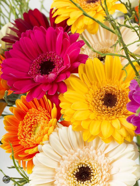 Boeket verse bloemen met bonte gerbera 39 s tuin for Gerbera in de tuin