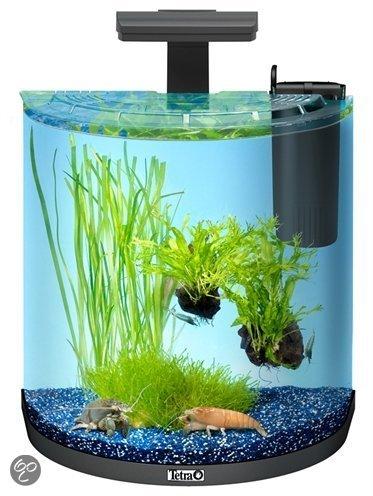 tetra aqua art explorer line aquarium 30 liter zwart. Black Bedroom Furniture Sets. Home Design Ideas