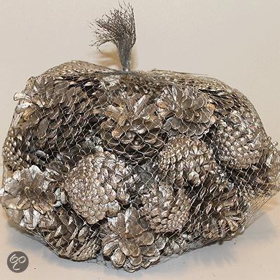 1 kg decoratie dennenappels zilver for Decoratie zilver