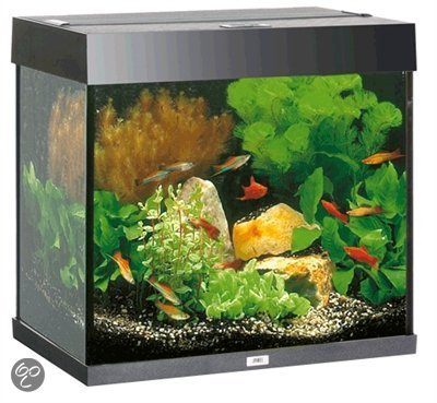 juwel lido aquarium 120 liter zwart. Black Bedroom Furniture Sets. Home Design Ideas