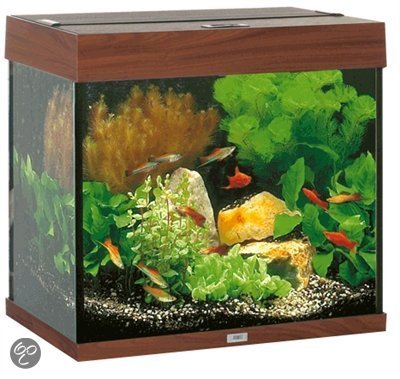 juwel lido aquarium 120 liter donkerbruin. Black Bedroom Furniture Sets. Home Design Ideas