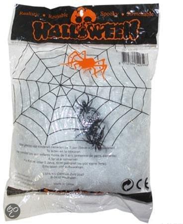 Wit spinnenweb met spinnen 60 gr in De Hoeve