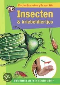 Insecten & kriebeldiertjes