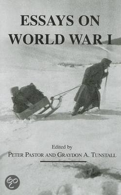 essay on WW1 poetry and Trench Warfare