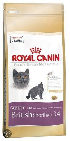 royal canin british shorthair kattenvoer 10 kg dier. Black Bedroom Furniture Sets. Home Design Ideas