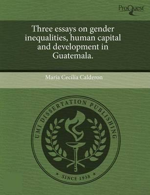 Essays On Gender Sociology
