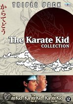 Karate Kid Collection (3DVD)