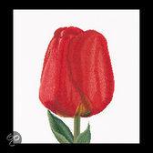 521A Rode Darwin Tulp Borduurpakket