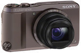 Sony Cybershot DSC-HX20V - Bruin