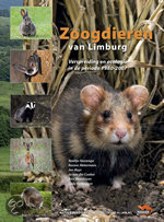 Zoogdieren Van Limburg