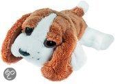 Suki Lil peepers basset hound hond bailey 15cm