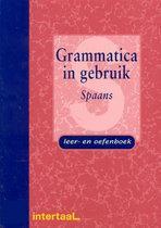 Grammatica in gebruik - Spaans