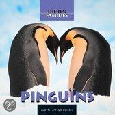 Dierenfamilies (10-16 jaar) / Pinguins