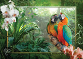 Ravensburger Puzzel - Papegaaien in de Jungle