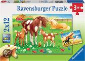 Wapperende manen - Kinderpuzzel - 12 Stukjes