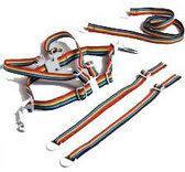 ISI Mini - Tuigje Looplijn - Regenboog