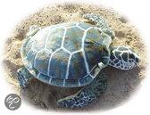 Zeeschildpad - 76 cm 