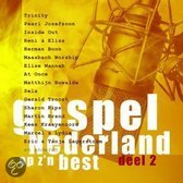 Gospel Nederland Op Z'n Best - Vol. 2