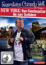 Feuerstein In New York
