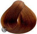 Naturtint 6g 1010 - Donker Goud Blond
