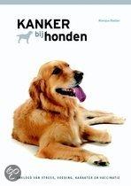 Kanker bij honden